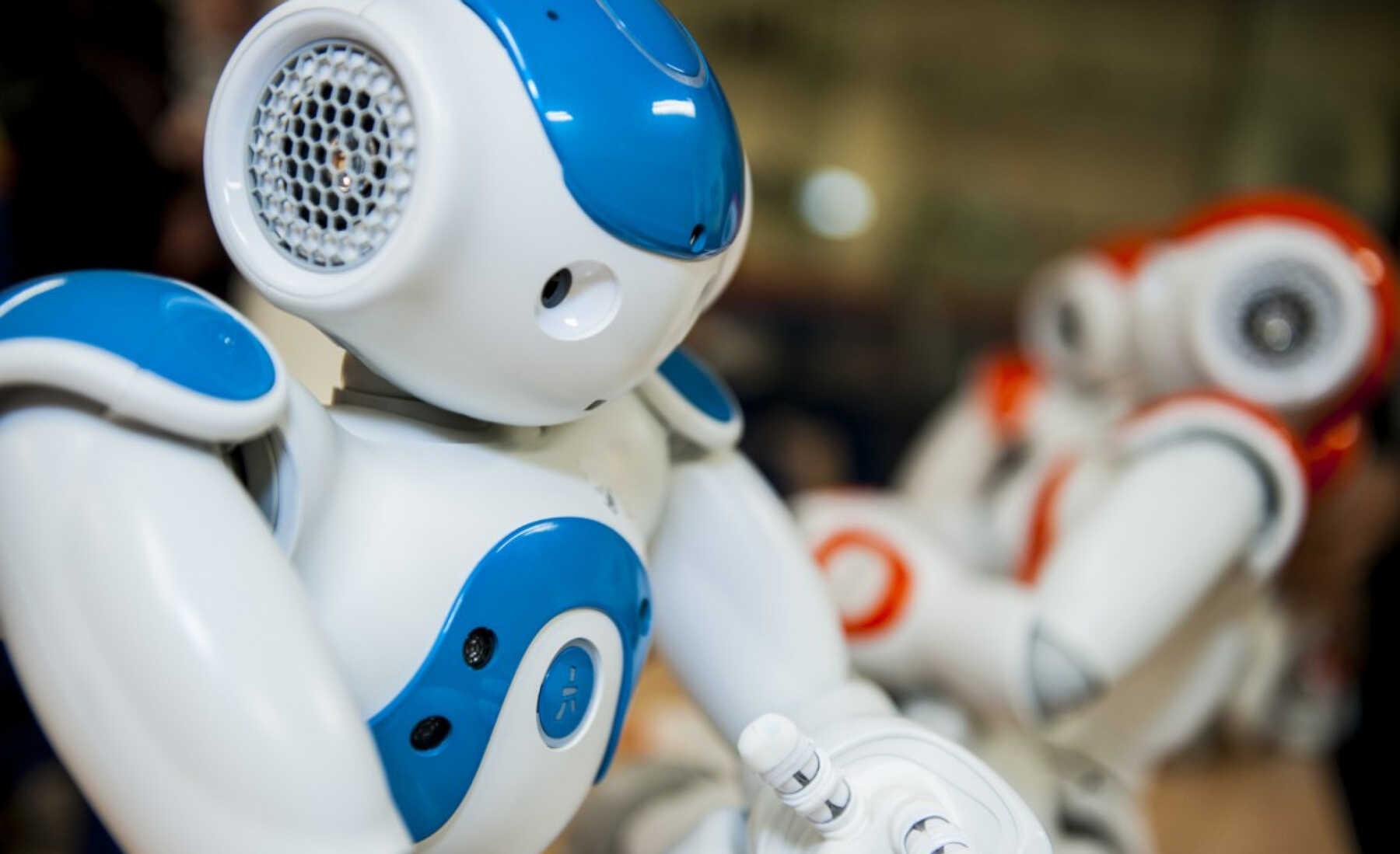 Brubotics robots
